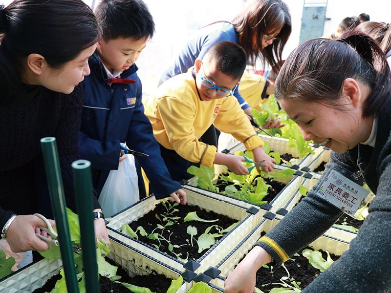 學校邀請家長做義工,由於反應熱烈,需以抽籤形式安排參加。