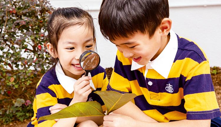 學生透過「小泰山」課程活動,有更多機會實踐課堂所學知識。
