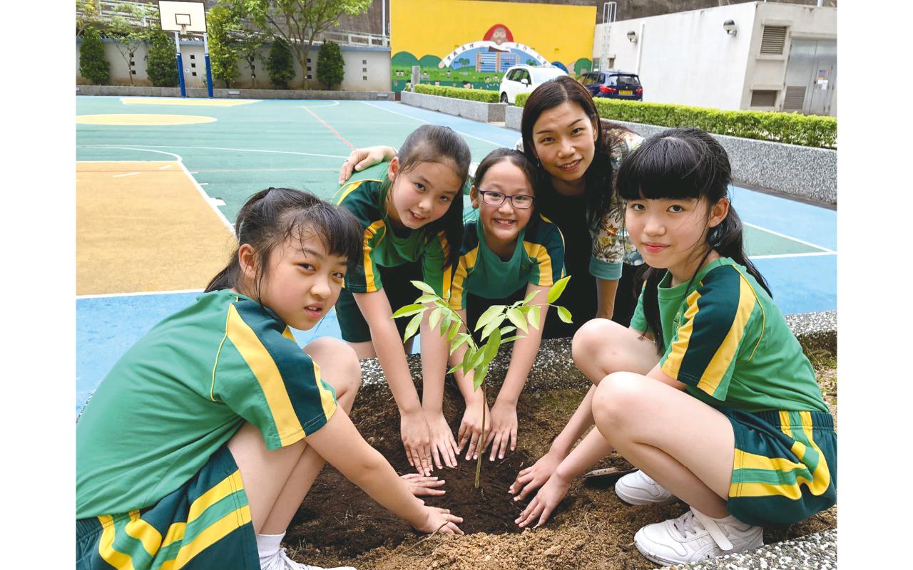學生從英文網頁中搜集資料,研習自然生態及環保主題。學校設有中草藥園種植中藥,老師會帶領學生設計自動灑水系統。