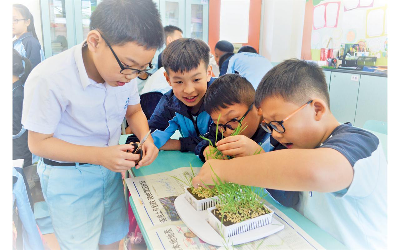 學校非常重視跨學科學習,讓學生的知識結構更為緊密,形成整體全面的學習觀。