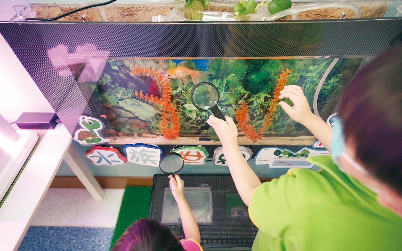 學校亦積極推動環境教育工作,設置了生態園地,讓學童藉着生態缸觀賞和照顧不同的小動物,利用水耕種植了解不同的蔬菜,增加他們對生態的認識,並培育保育意識。