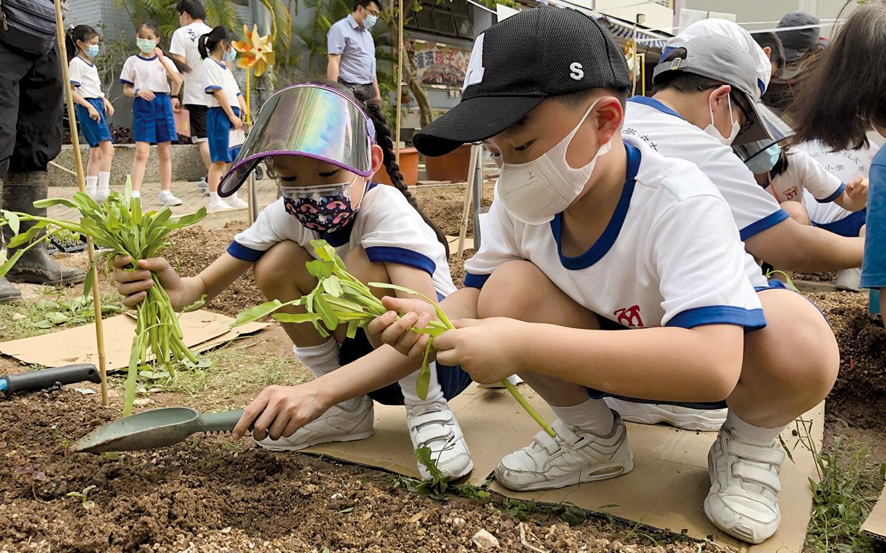 透過種植農作物,同學體驗從泥土而來的滿足感。