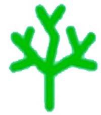 基督教小樹苗幼稚園校徽