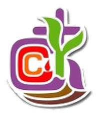 中華基督教會全完幼稚園校徽