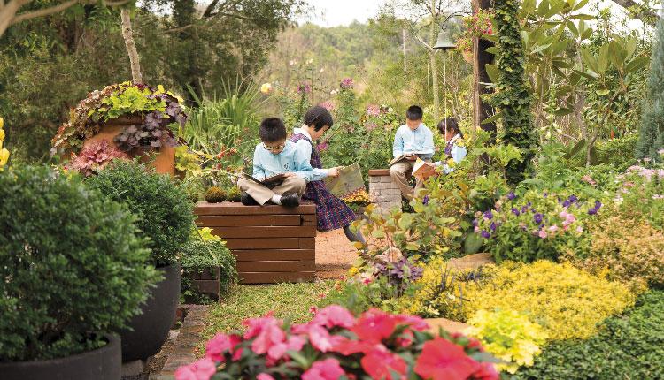 教育傳媒:學校雖然位置較為偏遠,但其森林般的校園設計卻是其珍貴之處,讓小朋友從小培養親近大自然的興趣。