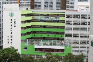 道教青松小學(湖景邨) - 學校簡介日的活動相片